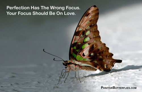 Perfection-wrong-focus